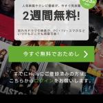 安室奈美恵の花火ショー生配信動画を無料で見る方法を紹介!見逃し配信をスマホで見る方法も