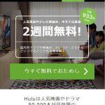 SKE48炎の関東ツアー2019のライブビューイングはある?リアルタイム配信動画を無料試聴する方法を調査!
