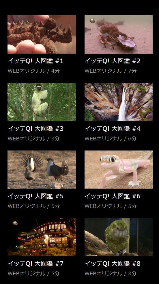 HuluでイッテQ大図鑑の過去動画・バックナンバーの配信状況一覧