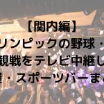 【関内編】東京オリンピックの野球・ソフトボール観戦をテレビ中継してる居酒屋・スポーツバーまとめ